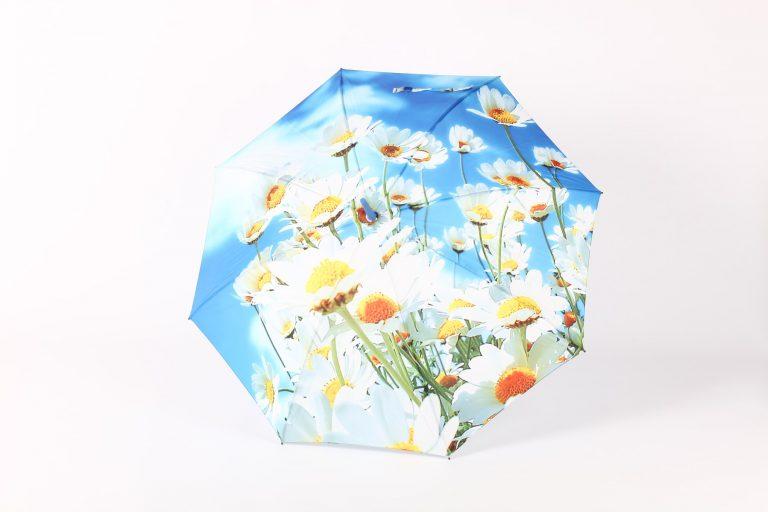 zest umbrella spring summer
