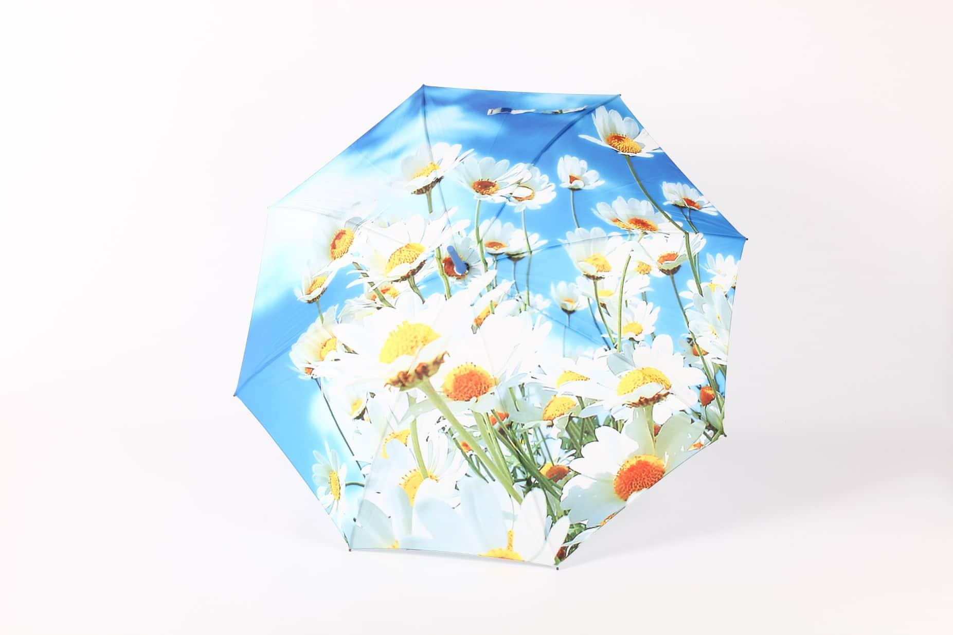 zest umbrella spring summer